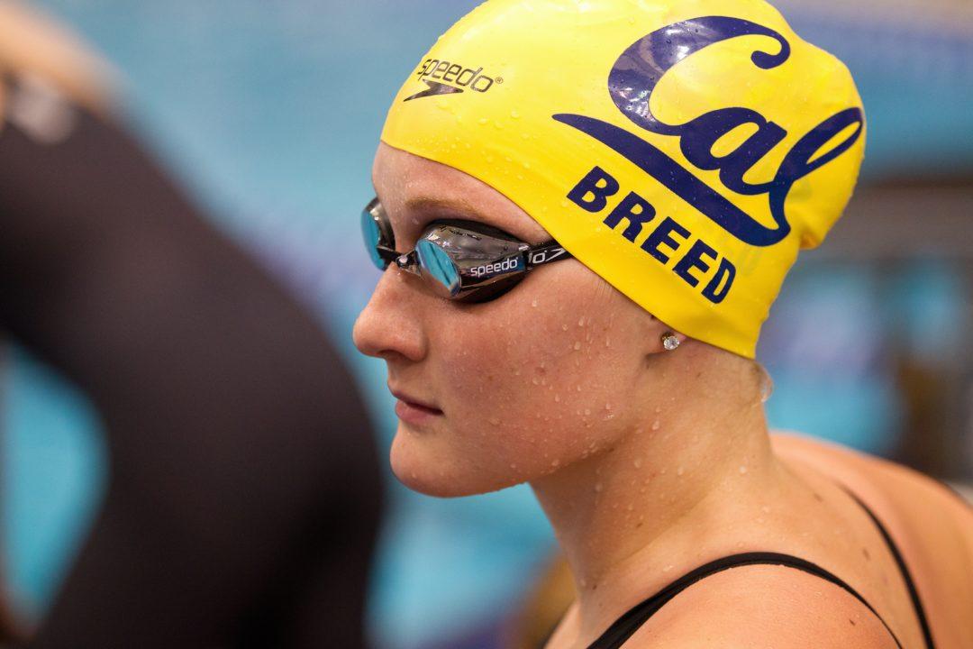 SSPC: Marathon Swimmer Catherine Breed Details Racing 20+ Mile Ocean Swims