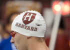 'Interim' no more: Kevin Tyrrell named head men's coach at Harvard