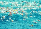 Zombies to Swim English Channel in 2015