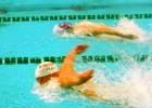 SwimSpray