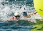Tell us more – Insights from USA Swimming National Team Open Water Swimmers