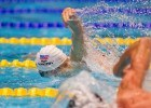 Morozov Breaks Russian Record, Hosszu Gets Hungarian Record on Day 1 of Salnikov Cup