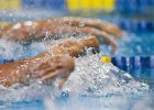 Shouts From the Stands: The Next Stroke for the Phoenix Swim Club