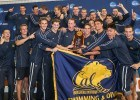 Cal Golden Bears celebrate the Team Title - 2014 Men's NCAA DI Swimming & Diving Championships  (courtesy of Tim Binning, theswimpictures)