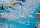 Following the Feet: Opening Day at the Daleview Swim Club