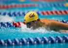 Hamilton wins duel with Murphy to become Cal 'King of the Pool', Li remains undefeated in women's meet