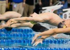 Cal Freshman Ryan Murphy starts the 100 backstroke championship final at the 2014 NCAA Division I Swimming and Diving Championships. (courtesy of Tim Binning, theswimpictues)