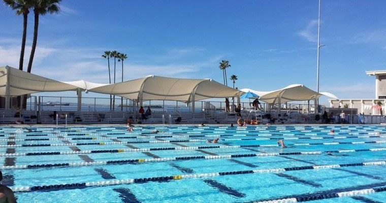 The temporary pool at Belmont Plaza is a ten-lane 50-meter outdoor facility. Photo courtesy of Rebuild Belmont Plaza Olympic Pool on Facebook.