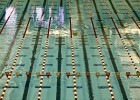 McCorkle Aquatic Pavilion, Stock, (Gold Medal Media)