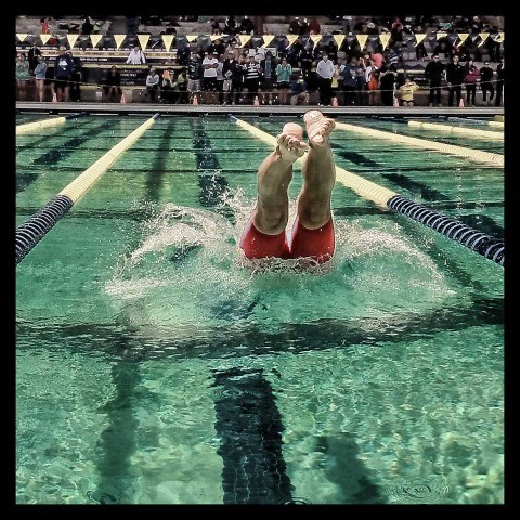 Dive in USMS Nationals by Mike Lewis 480x480 The show is over but the memories live on: USMS Nationals Photo Vault Day 4