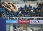 FINA Diving (courtesy of FINA)