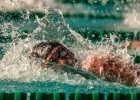 Swim Job: Palo Alto Stanford Aquatics seeks Full-Time Swim Coach