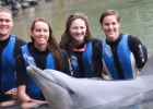 Cate & Bronte Campbell Swim with Dolphins: 2014 Pan Pacific Championships VIDEO