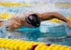 PSYCH SHEETS Released for USA Swimming 2014 Winter Nationals