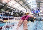 23 World Class Swimming Stats You Need To Know