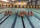 Coach's Intel: Islanders Aquatics and RAC Dual Out a Challenge Set