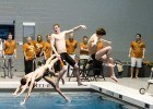 Does Texas practice Celey dives?