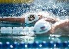 Bruno Fratis in the final of the 50 free Santa Clara (photo: Mike Lewis, Ola Vista Photography)