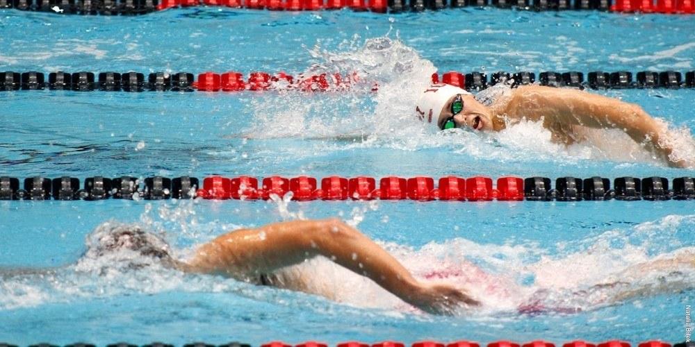 Missouri State Dominates At IUPUI Diving Invitational