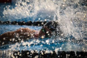 2019 PSS – Knoxville Day 3 Finals: Bulldogs, Bulldogs Everywhere