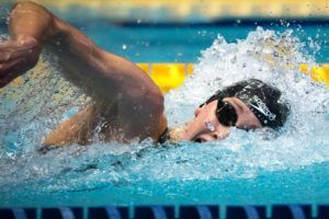 SwimSwam's Official 2018 Swammy Award Index