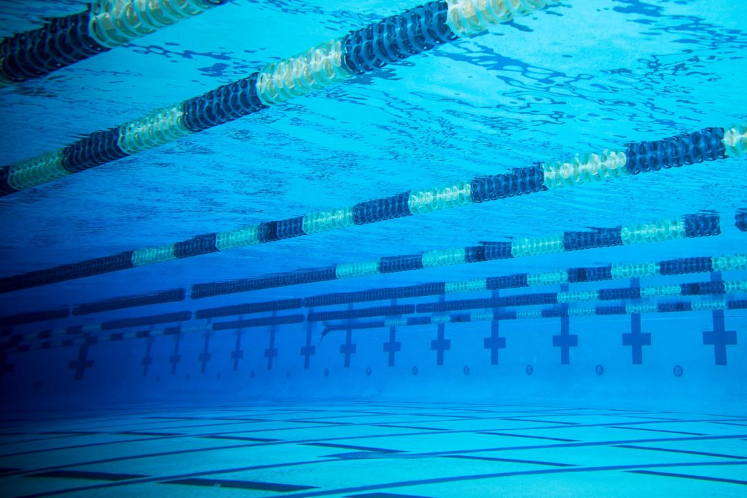 FINIS Set of the Week: Easy Recovery Set