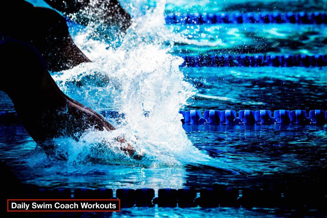 Daily Swim Coach Workout #202