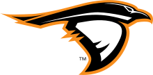Anderson University Swimming and Diving Team